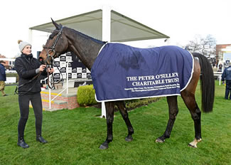 The Sir Peter O'Sullevan Memorial Chase