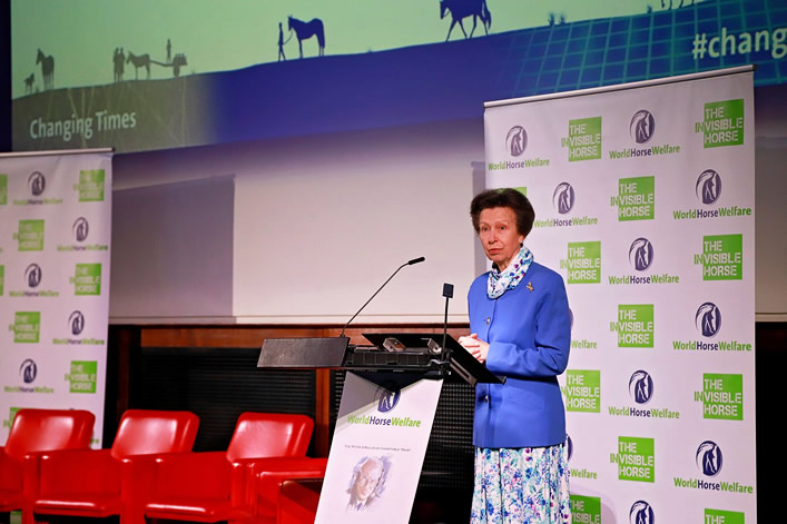 World Horse Welfare Conference 2018